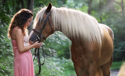 Equine Magic Therapy Benefits